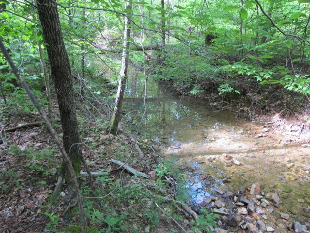 0 Roan Creek Rd, Lobelville, TN 37097 - Lobelville, TN real estate listing