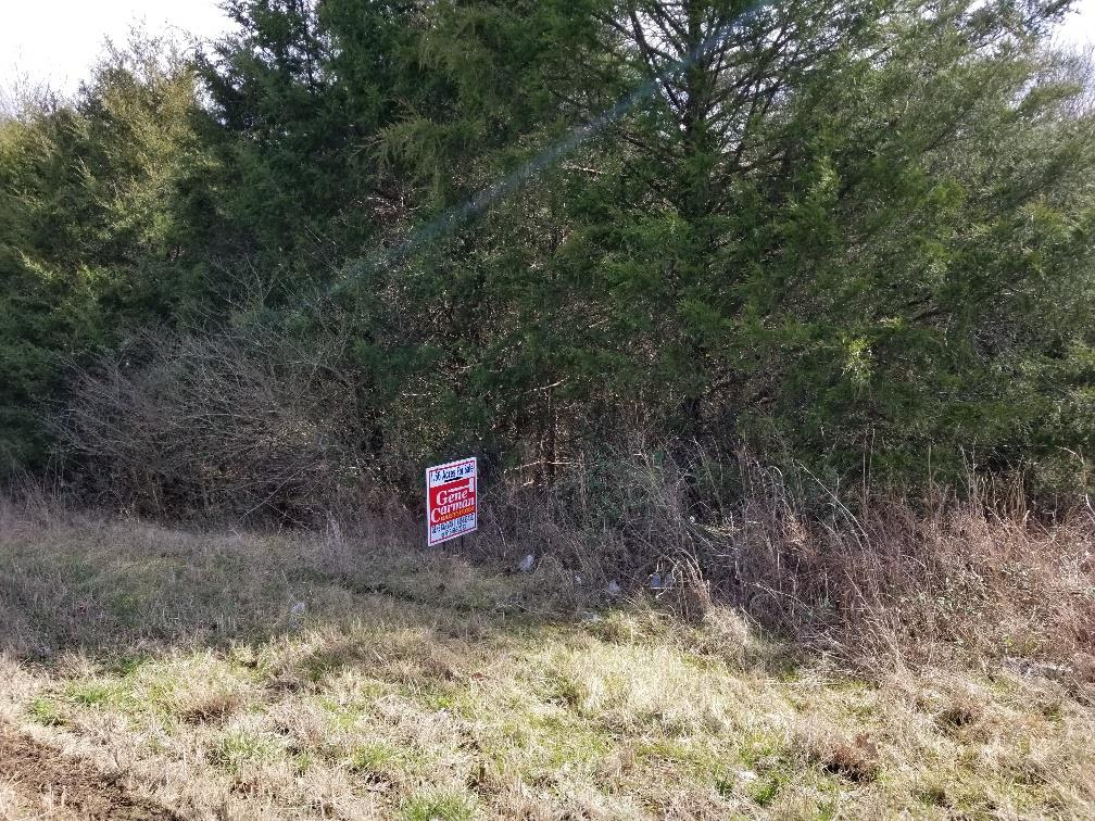 0 Hwy 53 Property Photo - Alexandria, TN real estate listing