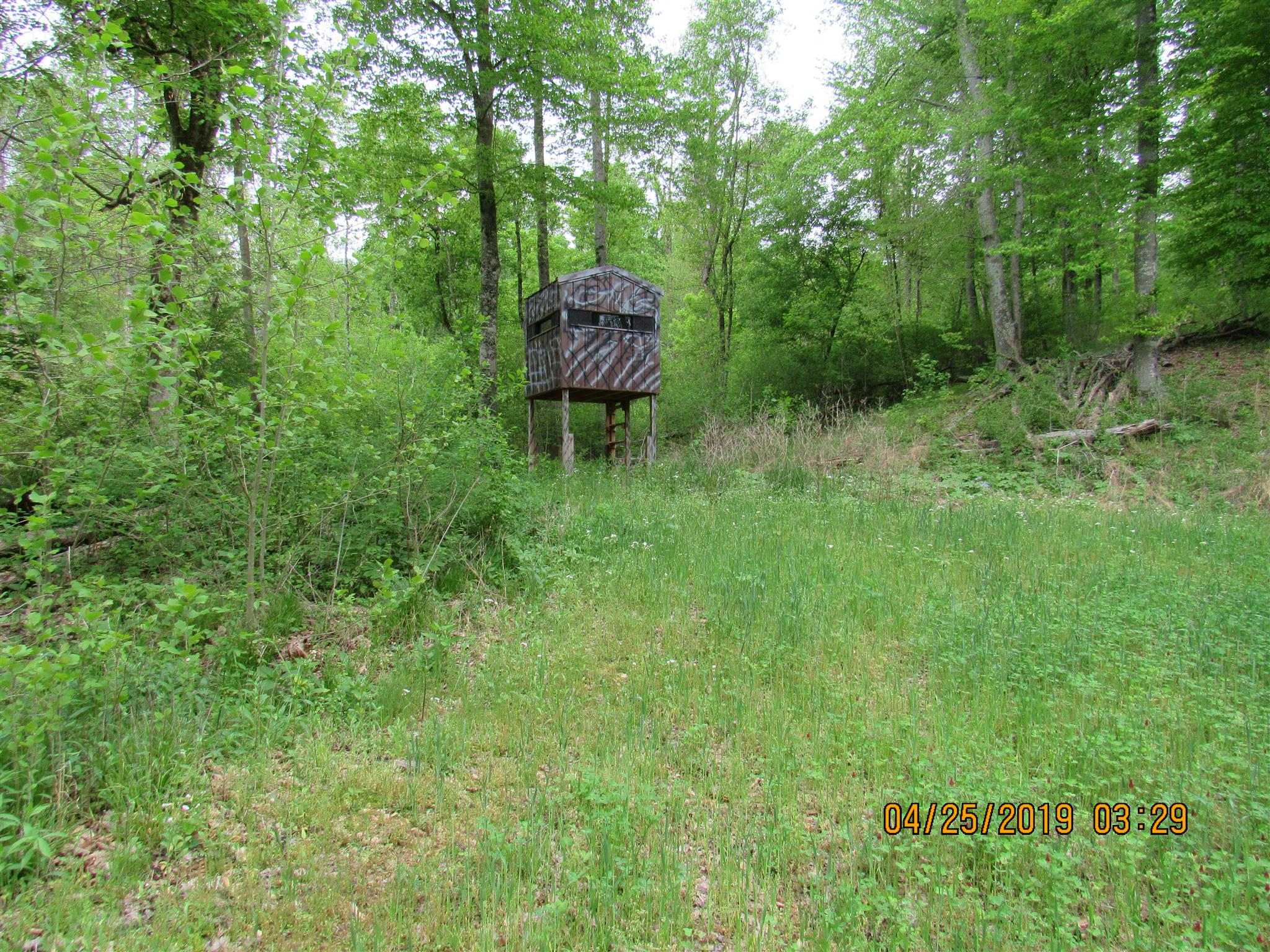 0 E Blue Ck Rd, MC EWEN, TN 37101 - MC EWEN, TN real estate listing