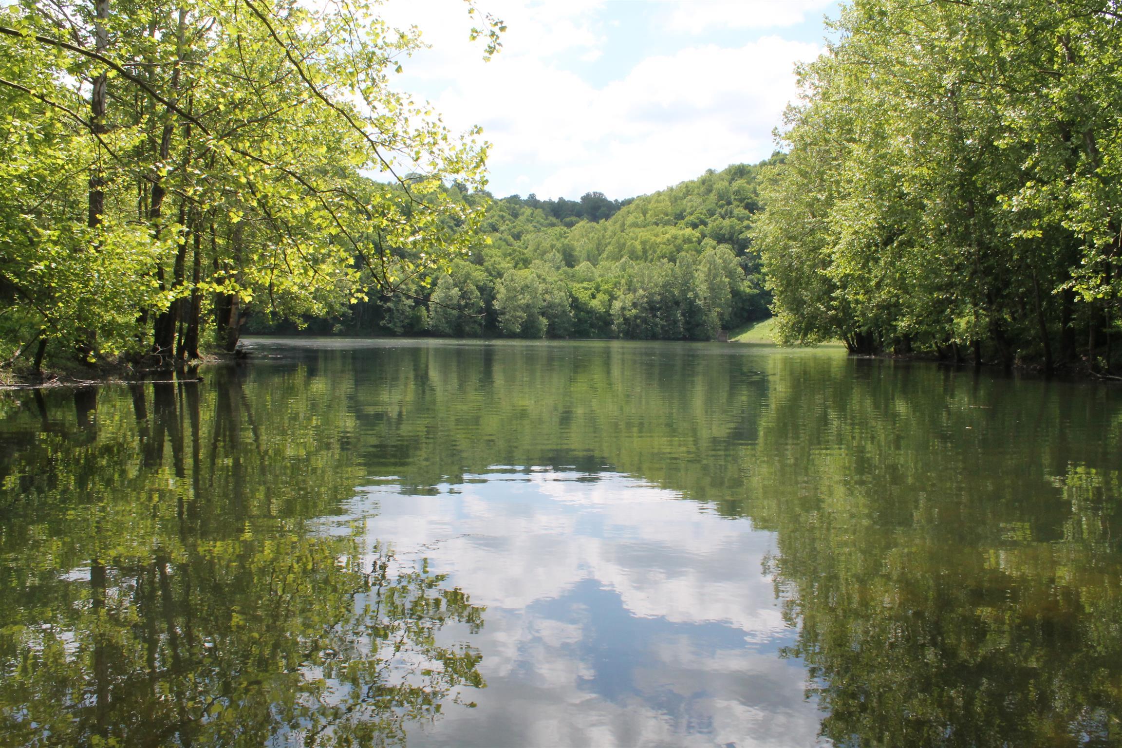 897 Crabtree Creek Rd, Whitleyville, TN 38588 - Whitleyville, TN real estate listing