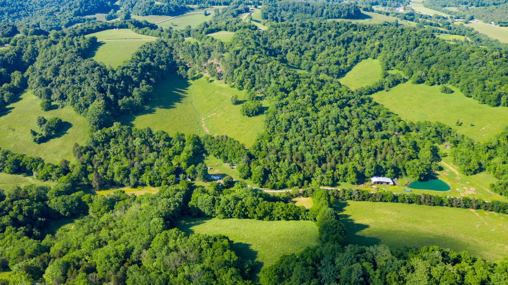59 Giles Hollow Rd, Fayetteville, TN 37334 - Fayetteville, TN real estate listing