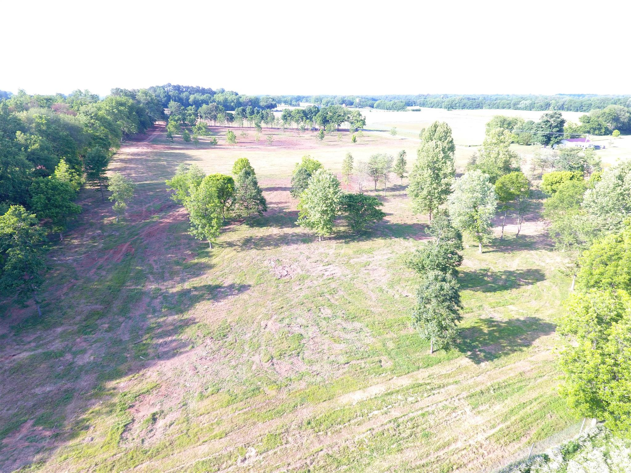 0 Owl Hollow Rd, Belvidere, TN 37306 - Belvidere, TN real estate listing
