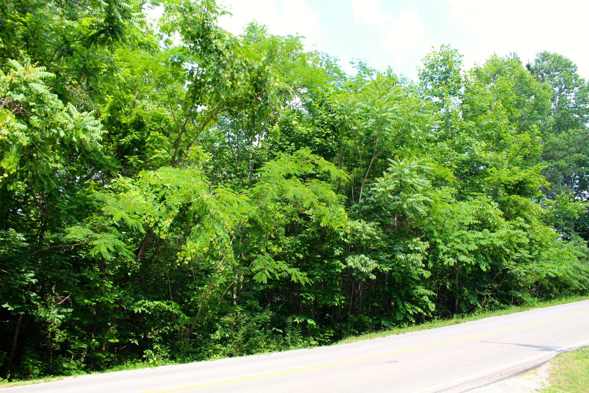 46 Old Hwy, Lyles, TN 37098 - Lyles, TN real estate listing