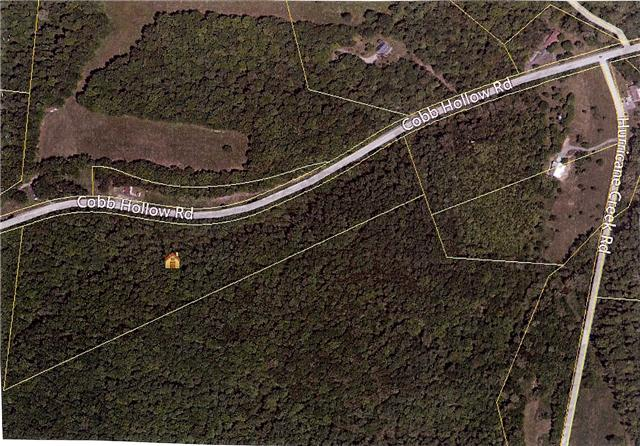 0 Cobb Hollow Rd Property Photo - Tullahoma, TN real estate listing