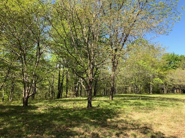 7950 Fisher Rd Lot #3, Primm Springs, TN 38476 - Primm Springs, TN real estate listing