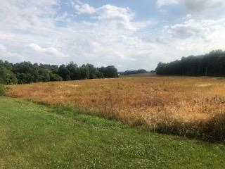 1880 Witcher Hollow Road Property Photo - Red Boiling Springs, TN real estate listing