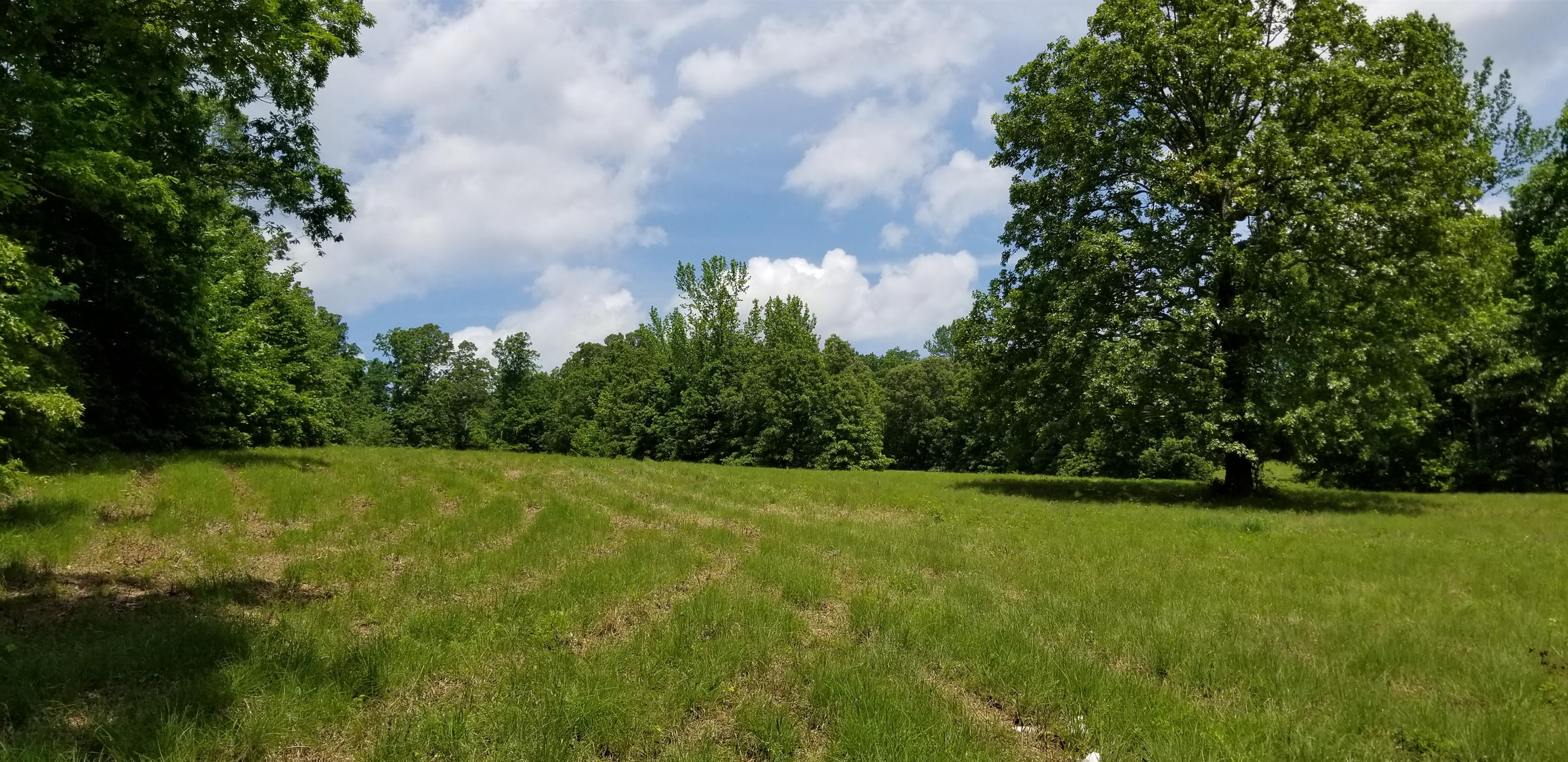 0 Highway 412 W Property Photo - Linden, TN real estate listing