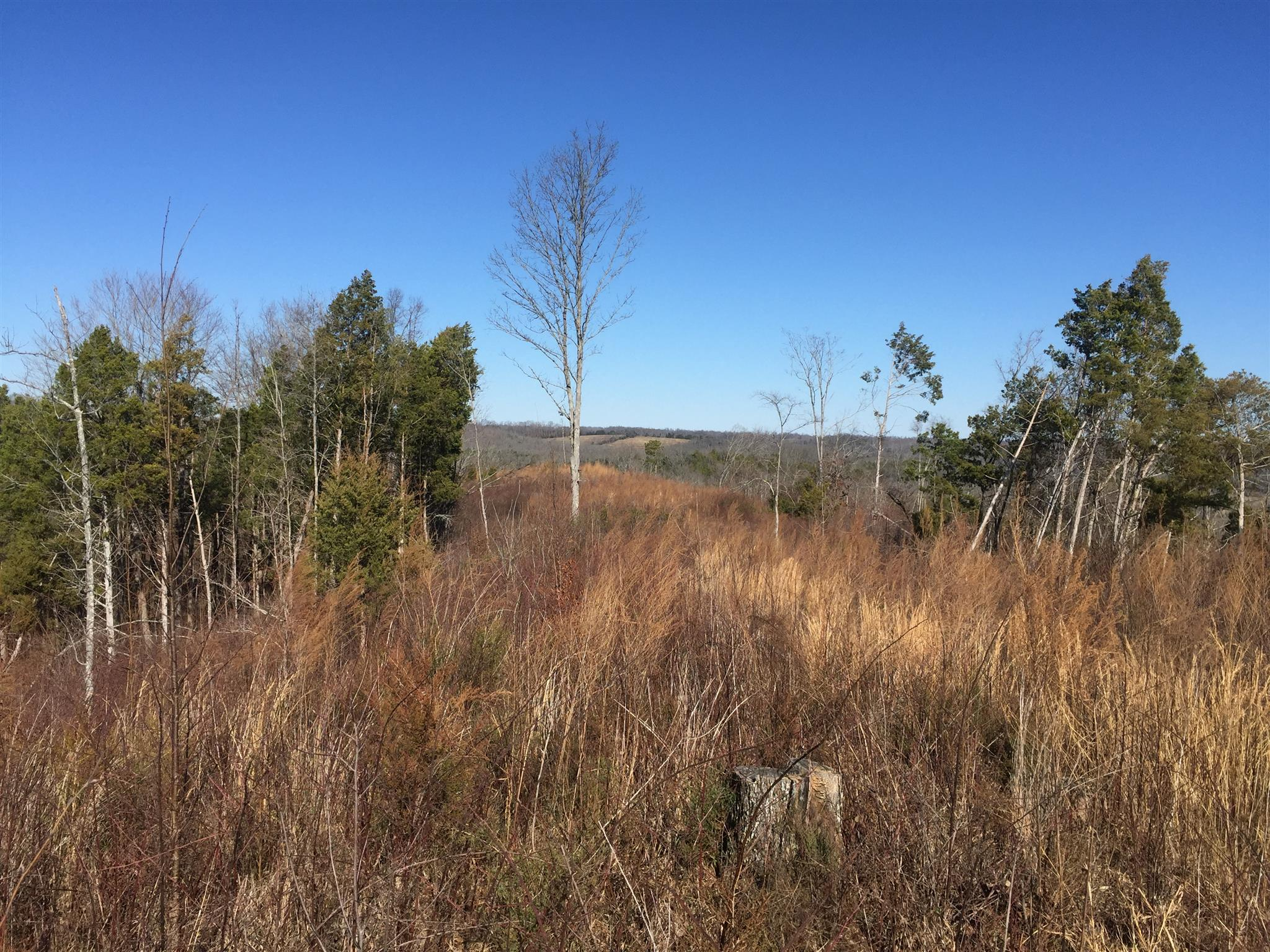 0 Champ Rd., Kelso, TN 37348 - Kelso, TN real estate listing