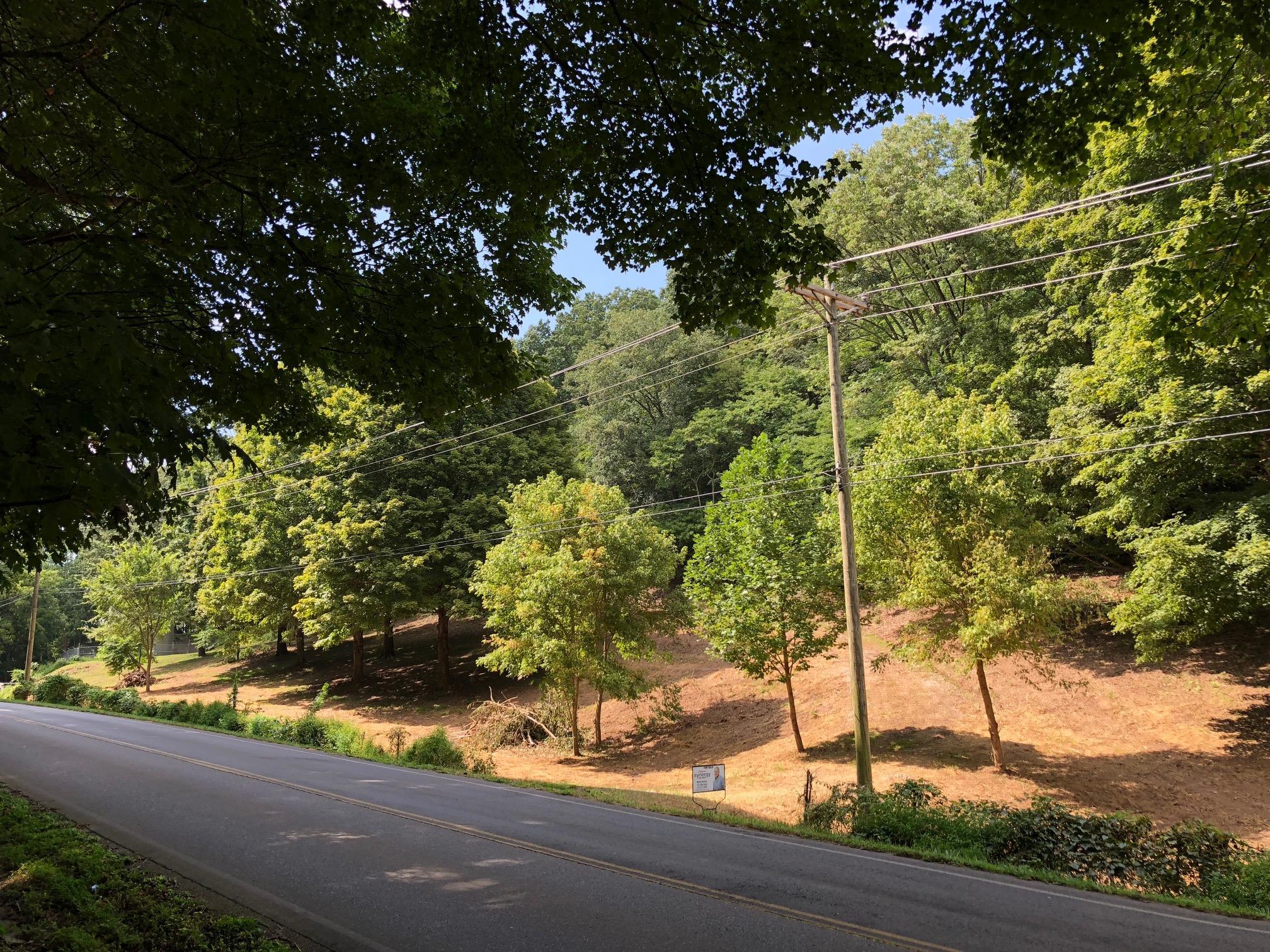 6790 Arno Allisona Rd, College Grove, TN 37046 - College Grove, TN real estate listing
