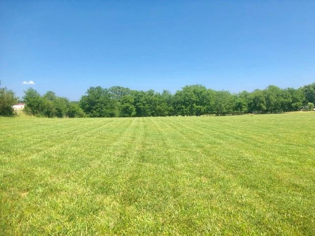 0 Hwy 231 South, Lot 1, Shelbyville, TN 37160 - Shelbyville, TN real estate listing