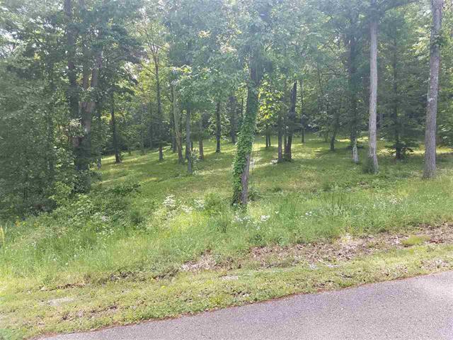 73 Riverbend Ln Property Photo - Bath Springs, TN real estate listing