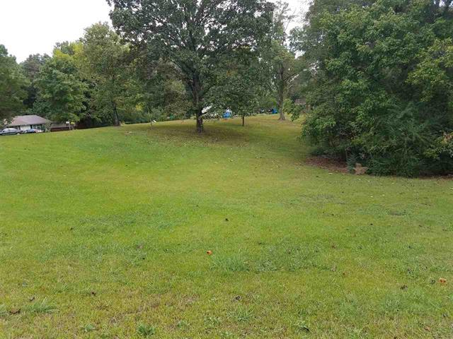298 S East St Property Photo - Decaturville, TN real estate listing
