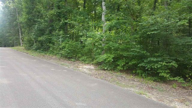 0 Fisher Dr Property Photo - Parsons, TN real estate listing