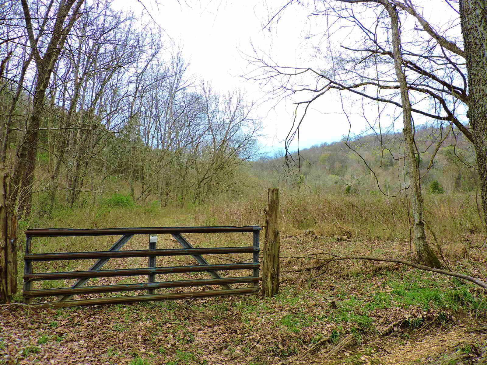 0 Barnetts Campground Ln, Gordonsville, TN 38563 - Gordonsville, TN real estate listing