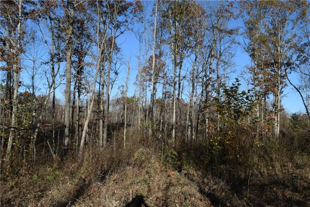 700 Frontier Road Property Photo - Altamont, TN real estate listing