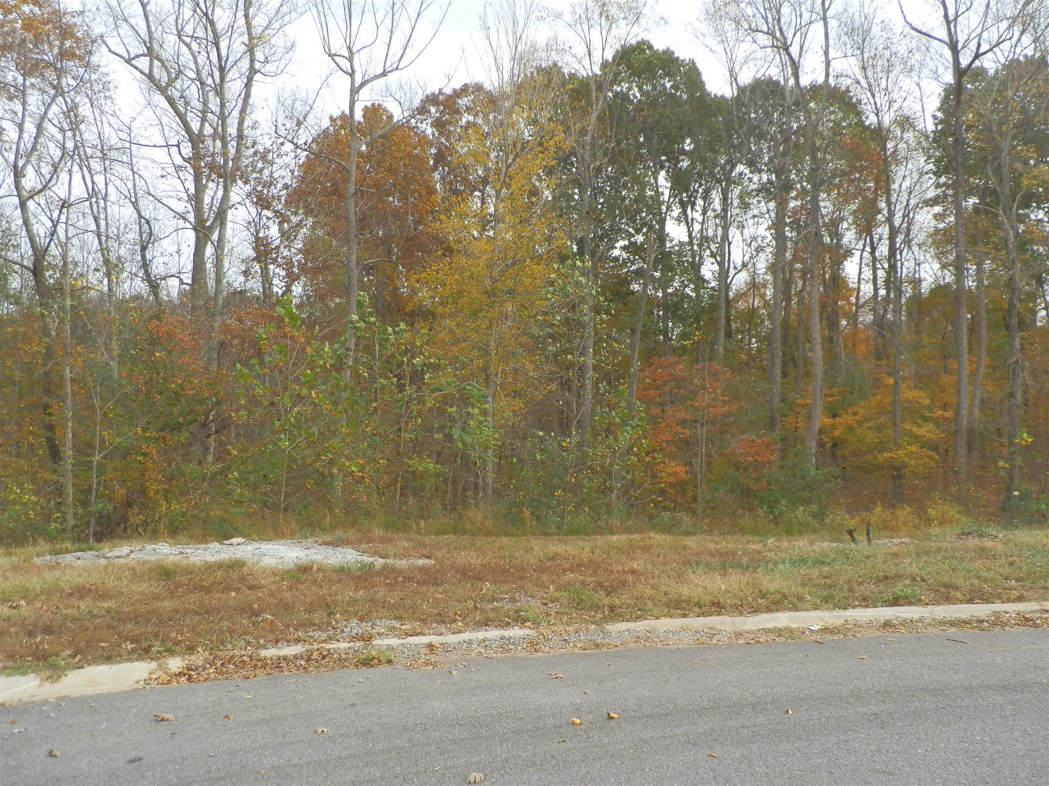 35 Meadowland (Lot 35) Property Photo - Adams, TN real estate listing