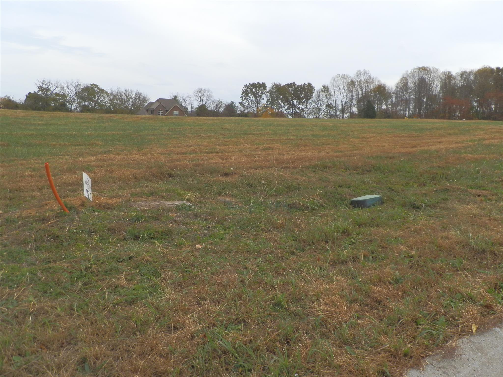17 Meadowland (Lot 17), Adams, TN 37010 - Adams, TN real estate listing