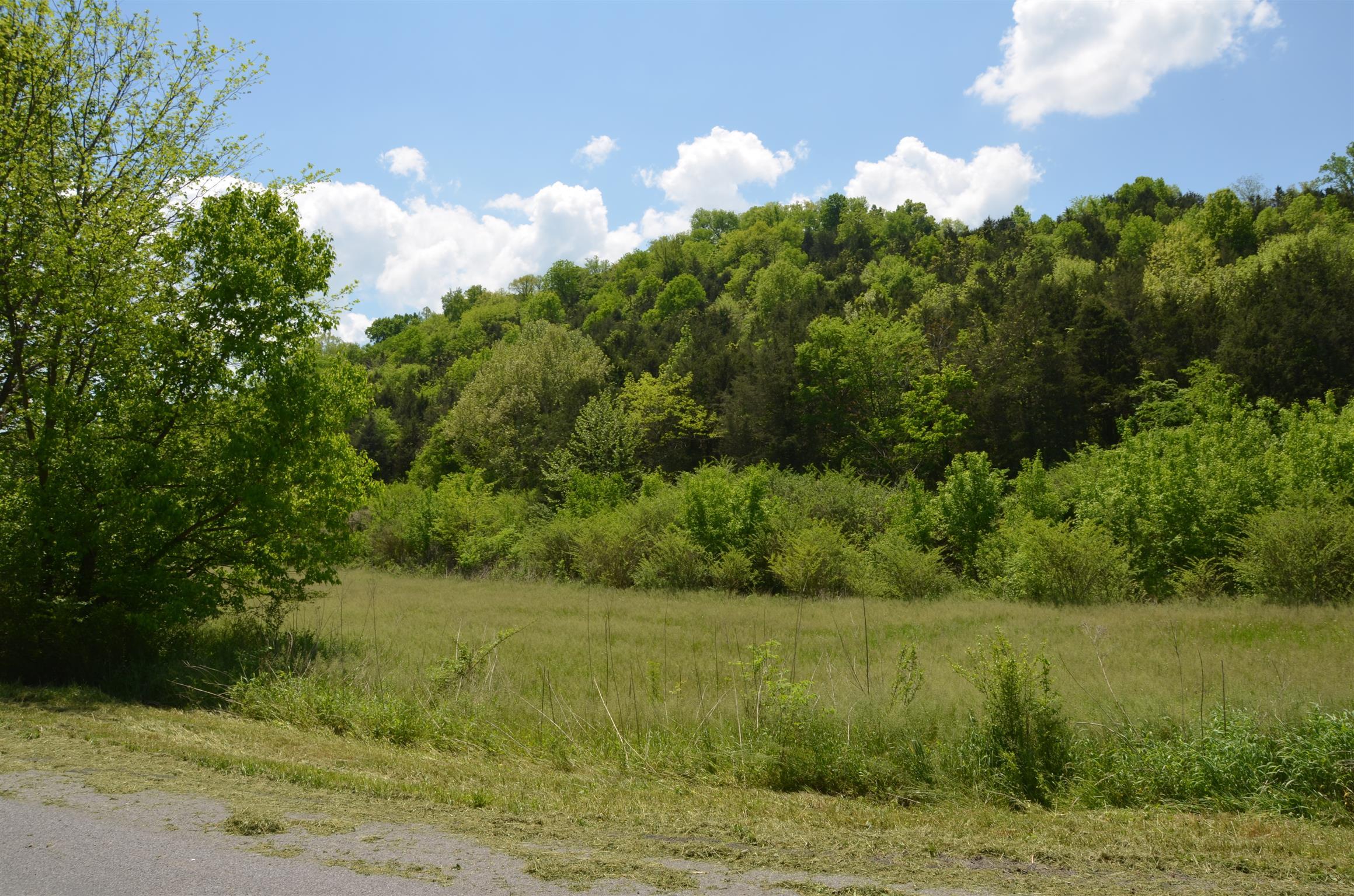 0 Hopkins Hollow Rd, Gainesboro, TN 38562 - Gainesboro, TN real estate listing
