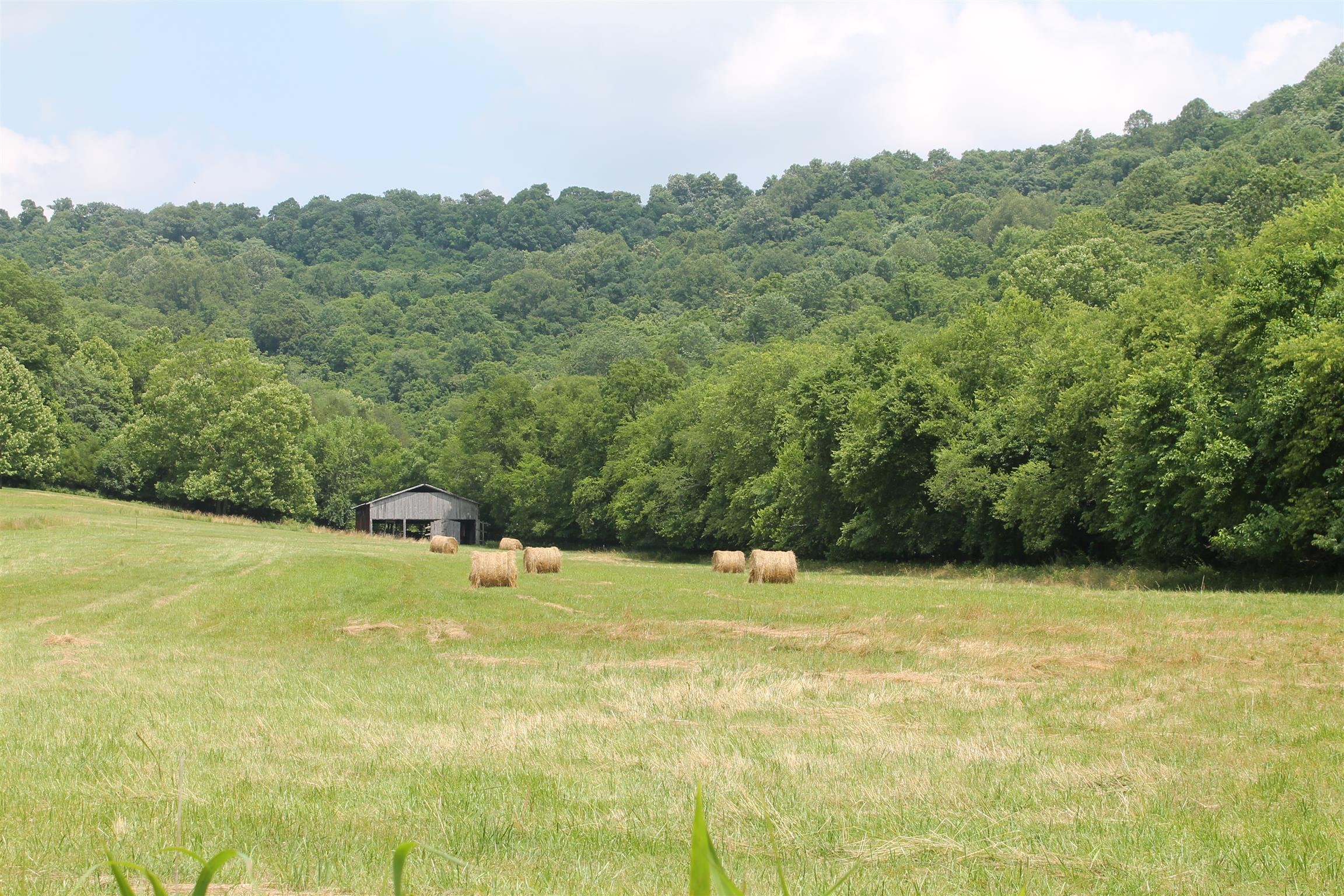 0 Beasley Hollow Ln, Carthage, TN 37030 - Carthage, TN real estate listing