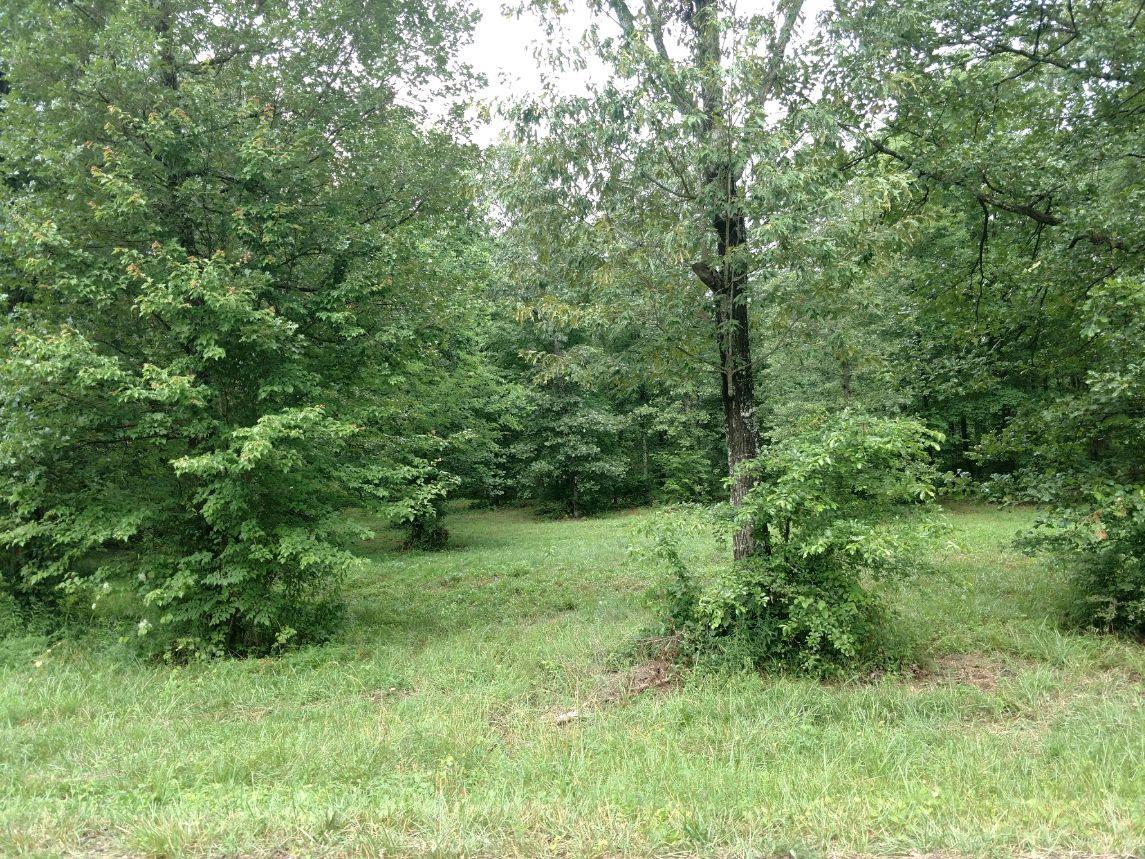 0 Skip Ave, Lawrenceburg, TN 38464 - Lawrenceburg, TN real estate listing