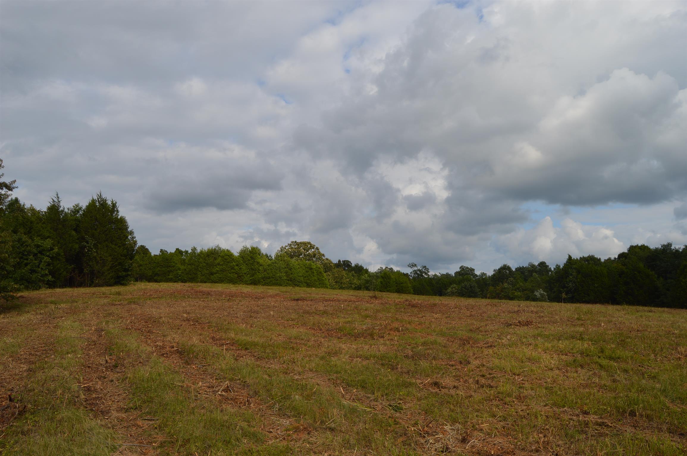 2380 Fairfield Pike, Shelbyville, TN 37160 - Shelbyville, TN real estate listing