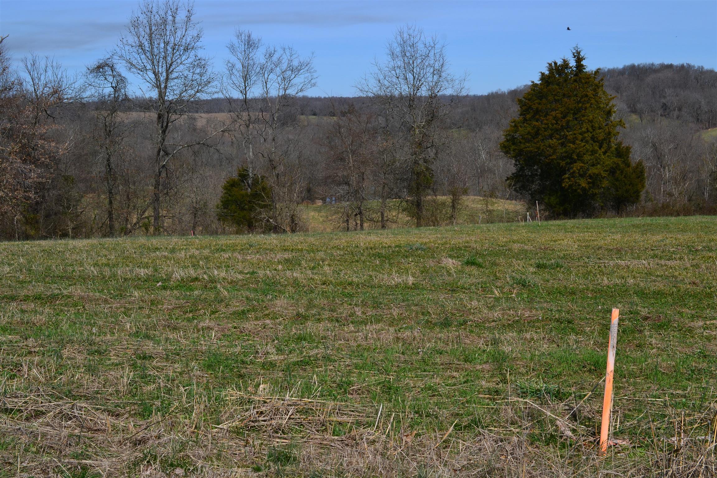 4 Rawlings Road, Woodlawn, TN 37191 - Woodlawn, TN real estate listing