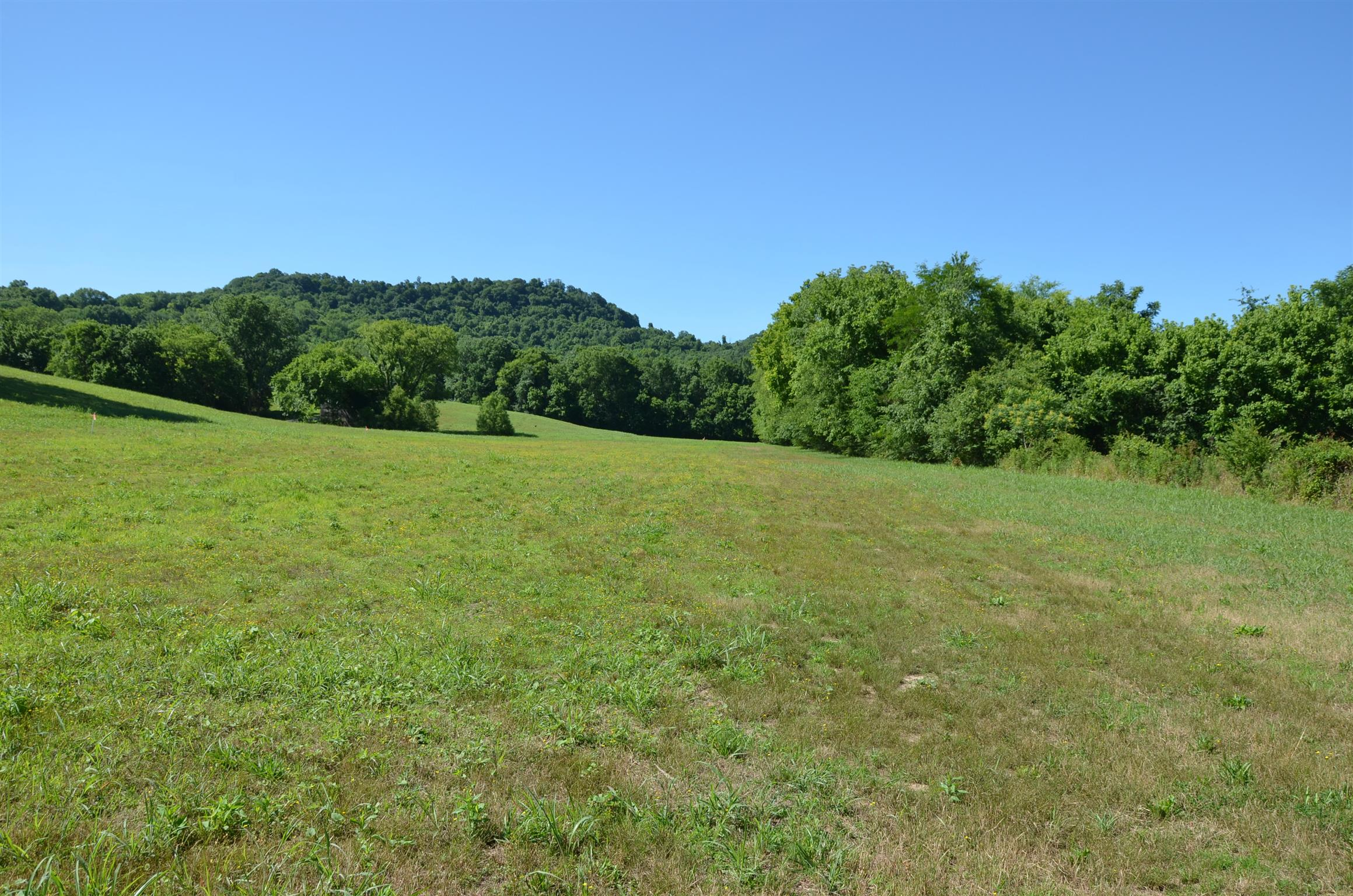 1 Alexandria to Dismal Rd, Liberty, TN 37095 - Liberty, TN real estate listing