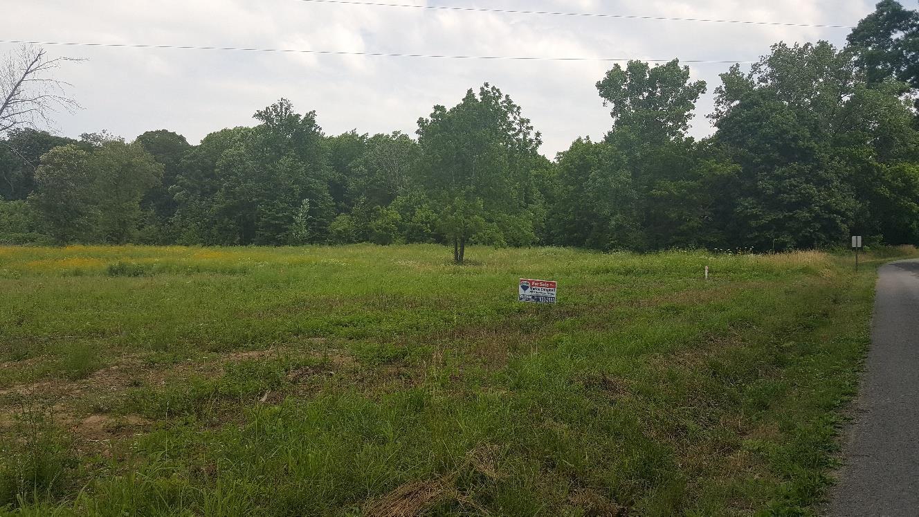 2 Bob Perry Road, Bethpage, TN 37022 - Bethpage, TN real estate listing