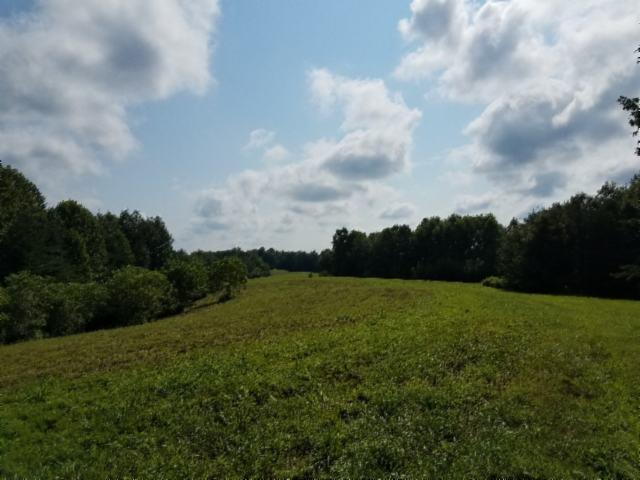131 .61 ac McCormick Rdg Rd., W, Red Boiling Springs, TN 37150 - Red Boiling Springs, TN real estate listing