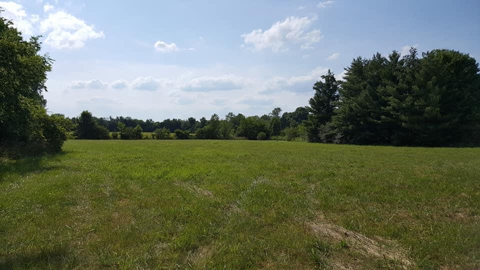 1 Cedar Grove Rd, Chapel Hill, TN 37034 - Chapel Hill, TN real estate listing