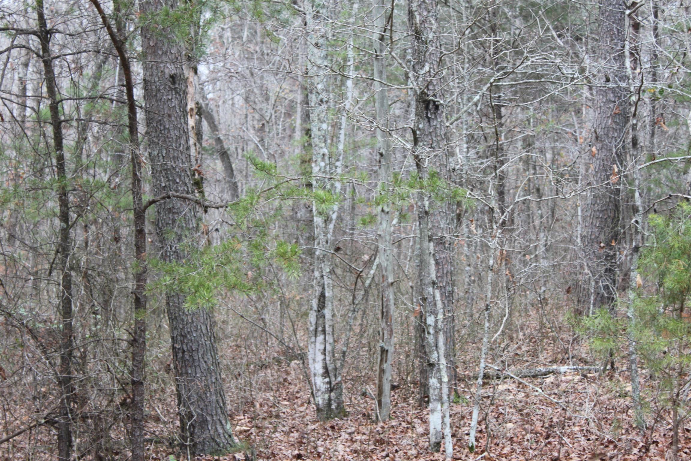 2 Timberwood Trace , Monteagle, TN 37356 - Monteagle, TN real estate listing