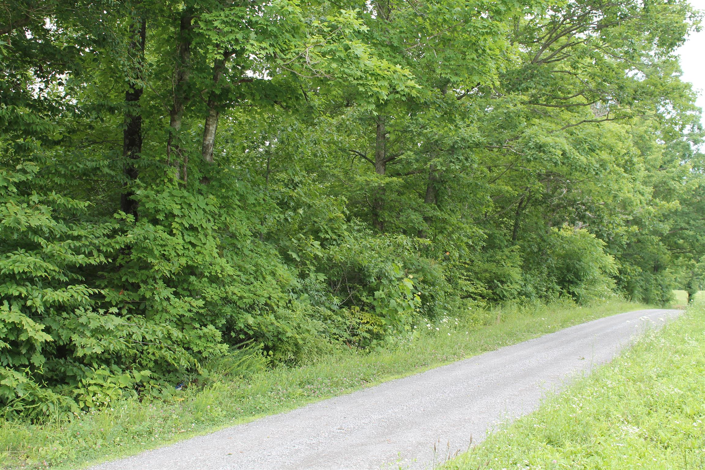 0 Hance Hollow Rd, Red Boiling Springs, TN 37150 - Red Boiling Springs, TN real estate listing