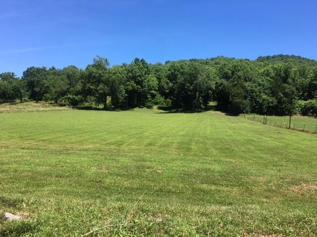 0 Little Salt Lick Creek Rd, Pleasant Shade, TN 37145 - Pleasant Shade, TN real estate listing