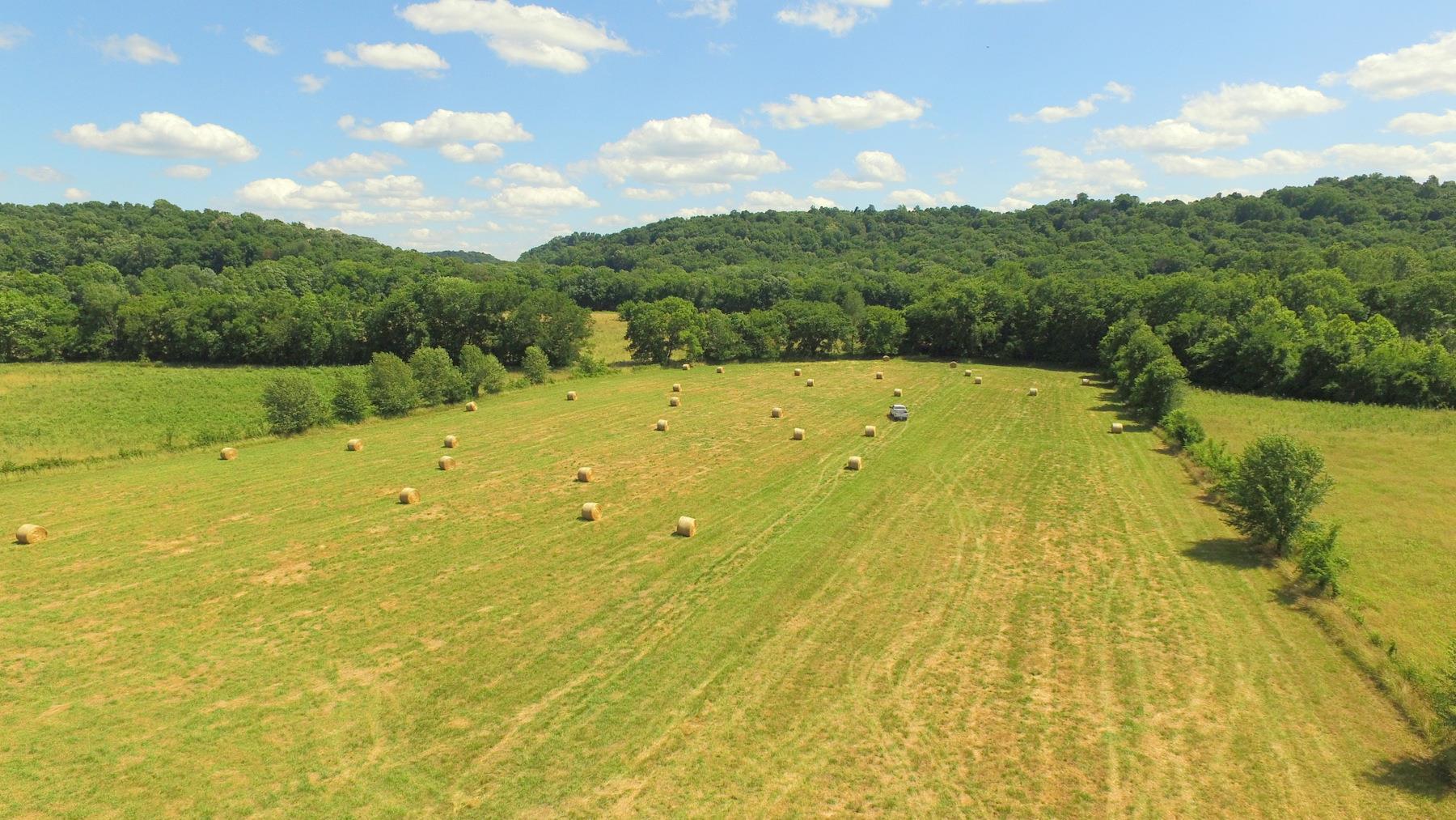 110 Ac- Williamson County Real Estate Listings Main Image
