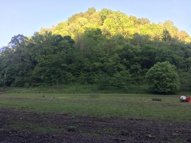 0 Shrum Hollow Road, Lafayette, TN 37083 - Lafayette, TN real estate listing