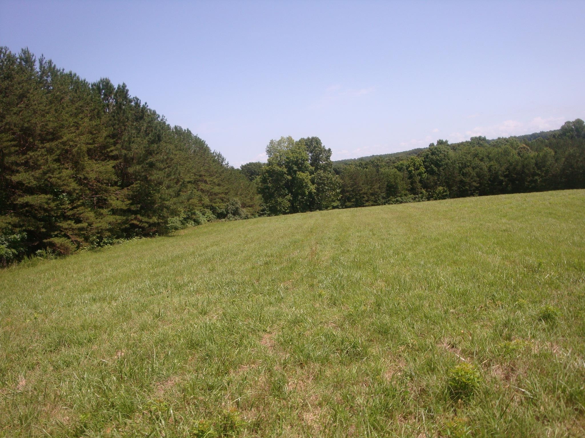 0 Central TurnPike, Summertown, TN 38483 - Summertown, TN real estate listing