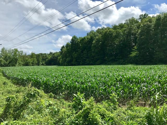 0 31E Highway Old, Westmoreland, TN 37186 - Westmoreland, TN real estate listing