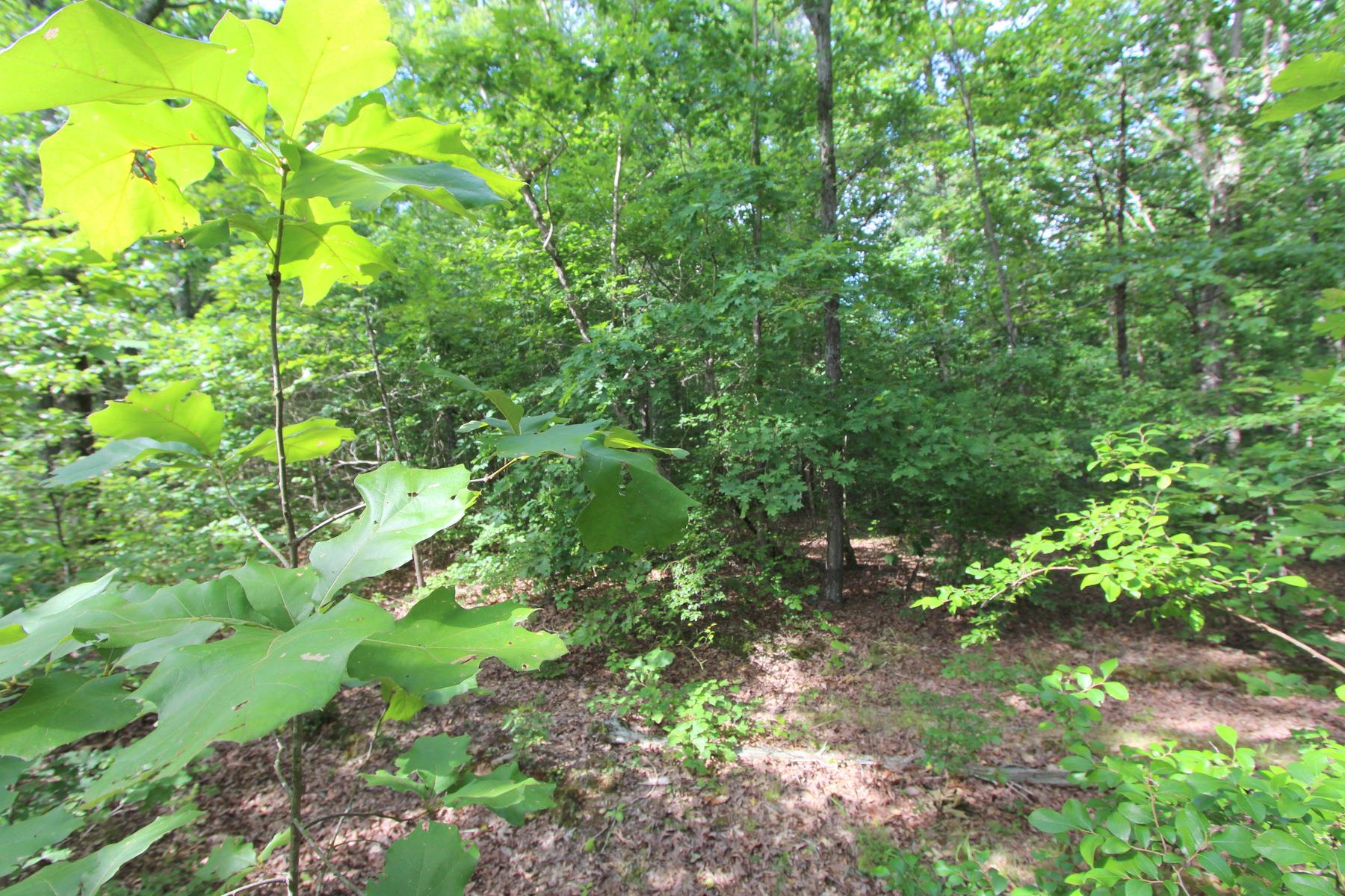 0 Bakerville Rd, Waverly, TN 37185 - Waverly, TN real estate listing