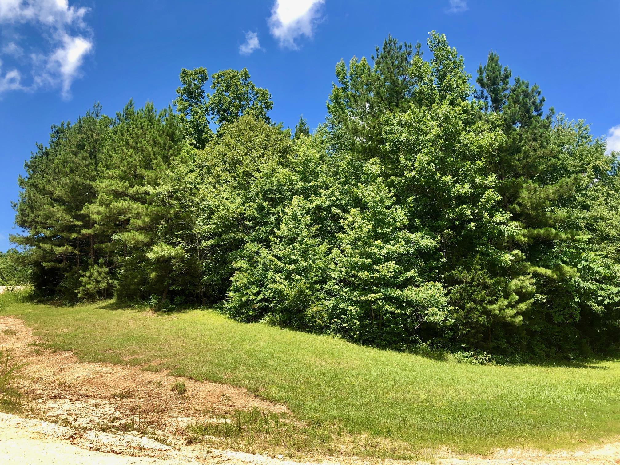 0 Beech Ridge Rd, Parsons, TN 38363 - Parsons, TN real estate listing
