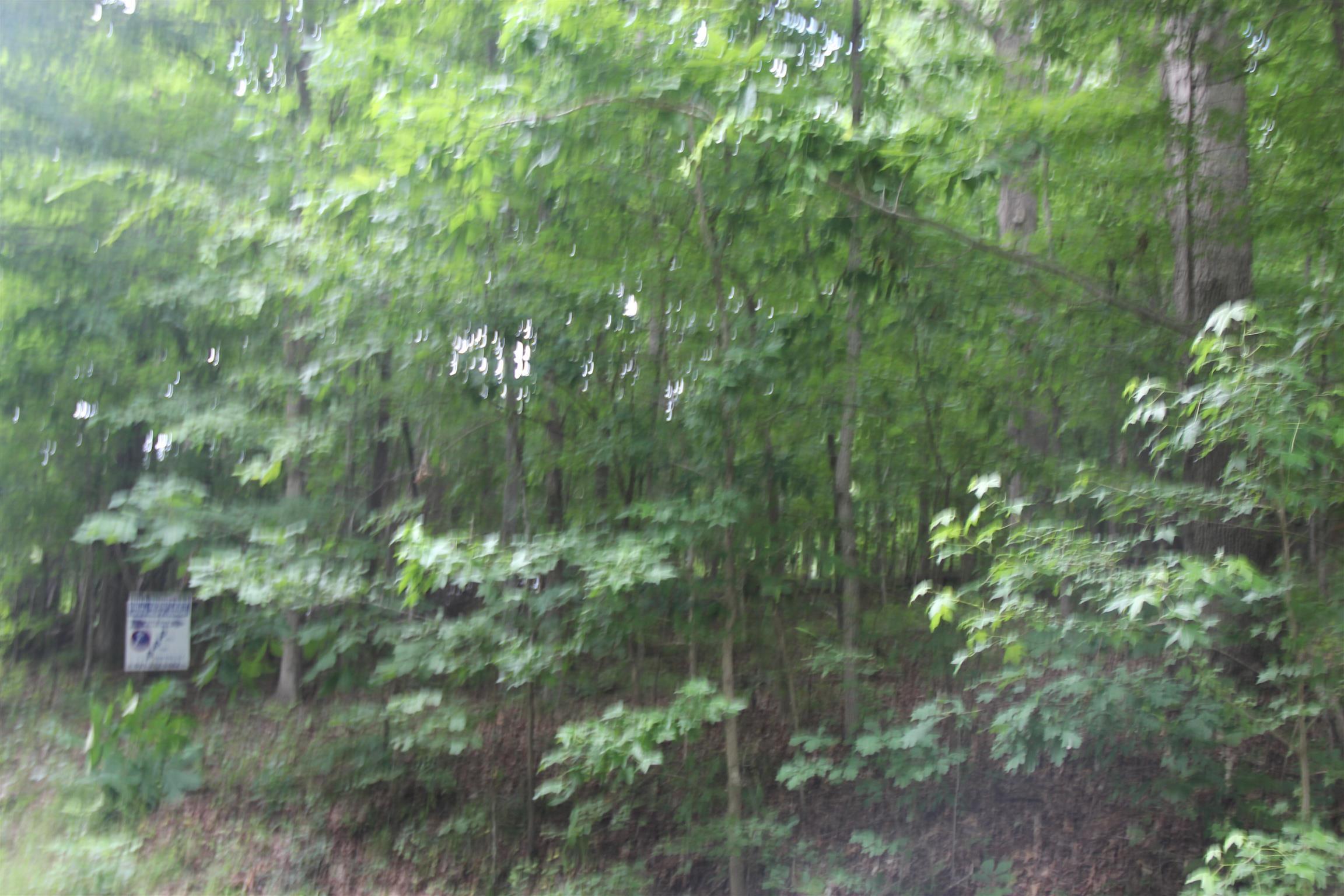 0 Patricia Circle, E, Indian Mound, TN 37079 - Indian Mound, TN real estate listing