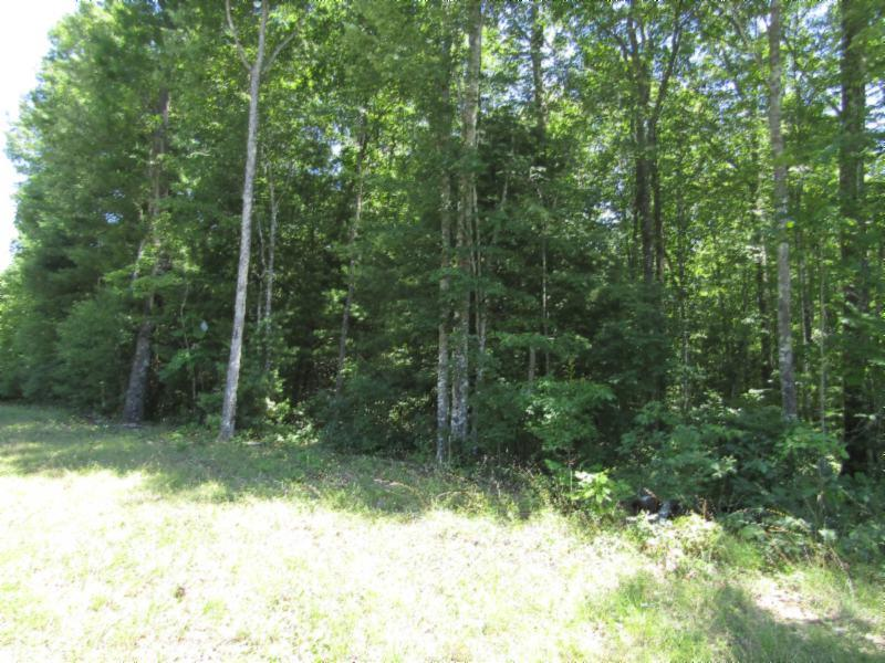 2 .83ac Wilderness Ln, Jamestown, TN 38556 - Jamestown, TN real estate listing
