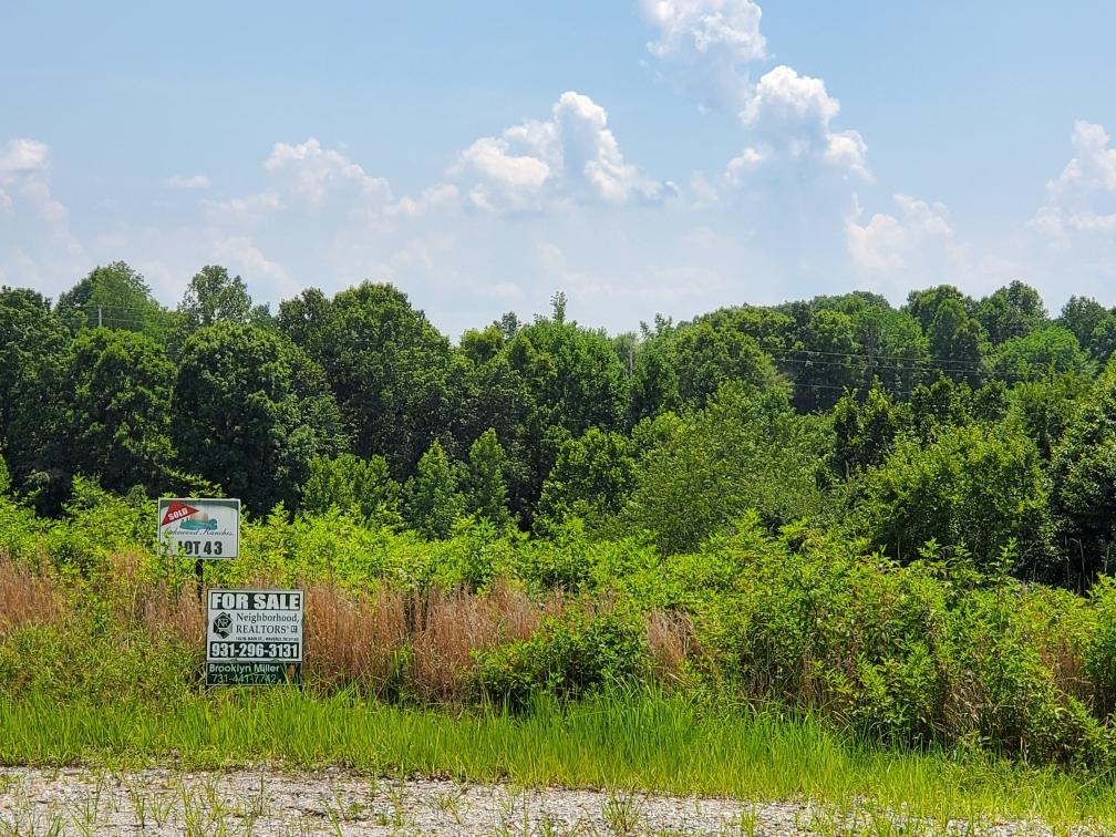 0 Briarfield Ct, Waverly, TN 37185 - Waverly, TN real estate listing