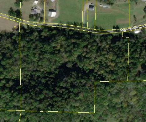 0 Massey Hollow Lane, Dixon Springs, TN 37057 - Dixon Springs, TN real estate listing