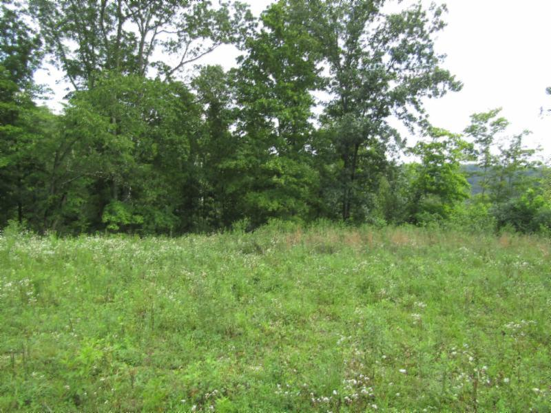 29 .95ac New Highway 52 E Property Photo - Celina, TN real estate listing