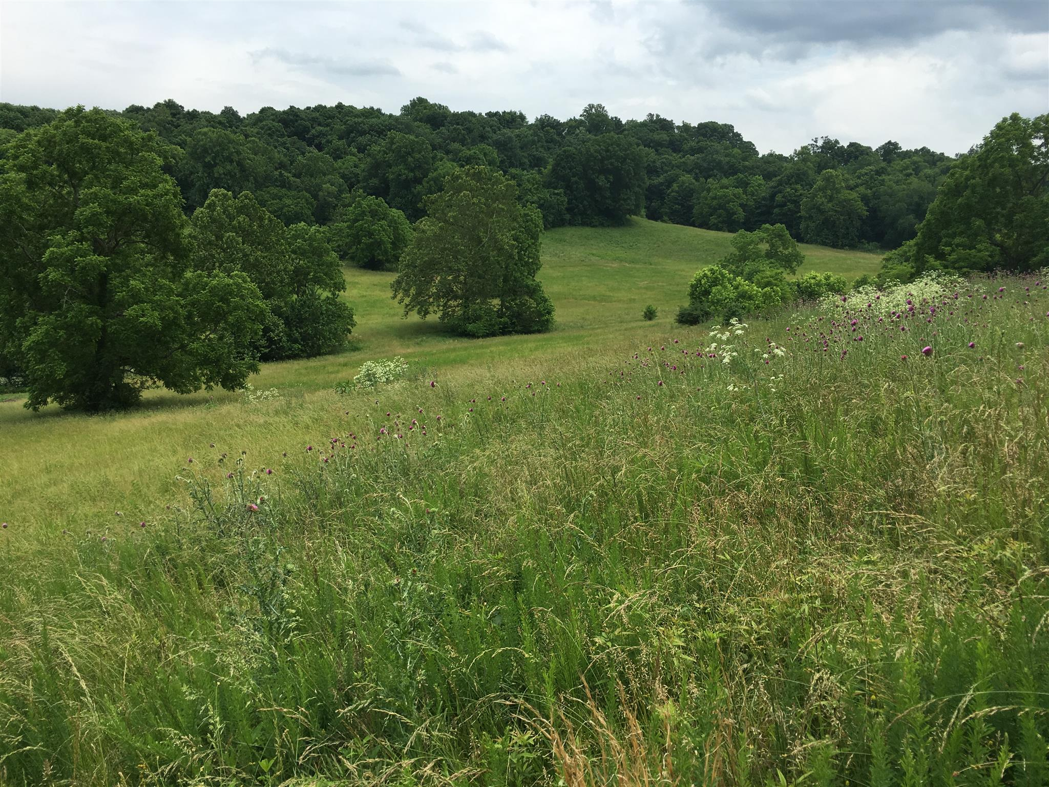 3400 Floyd Rd Parcel 1, Franklin, TN 37064 - Franklin, TN real estate listing