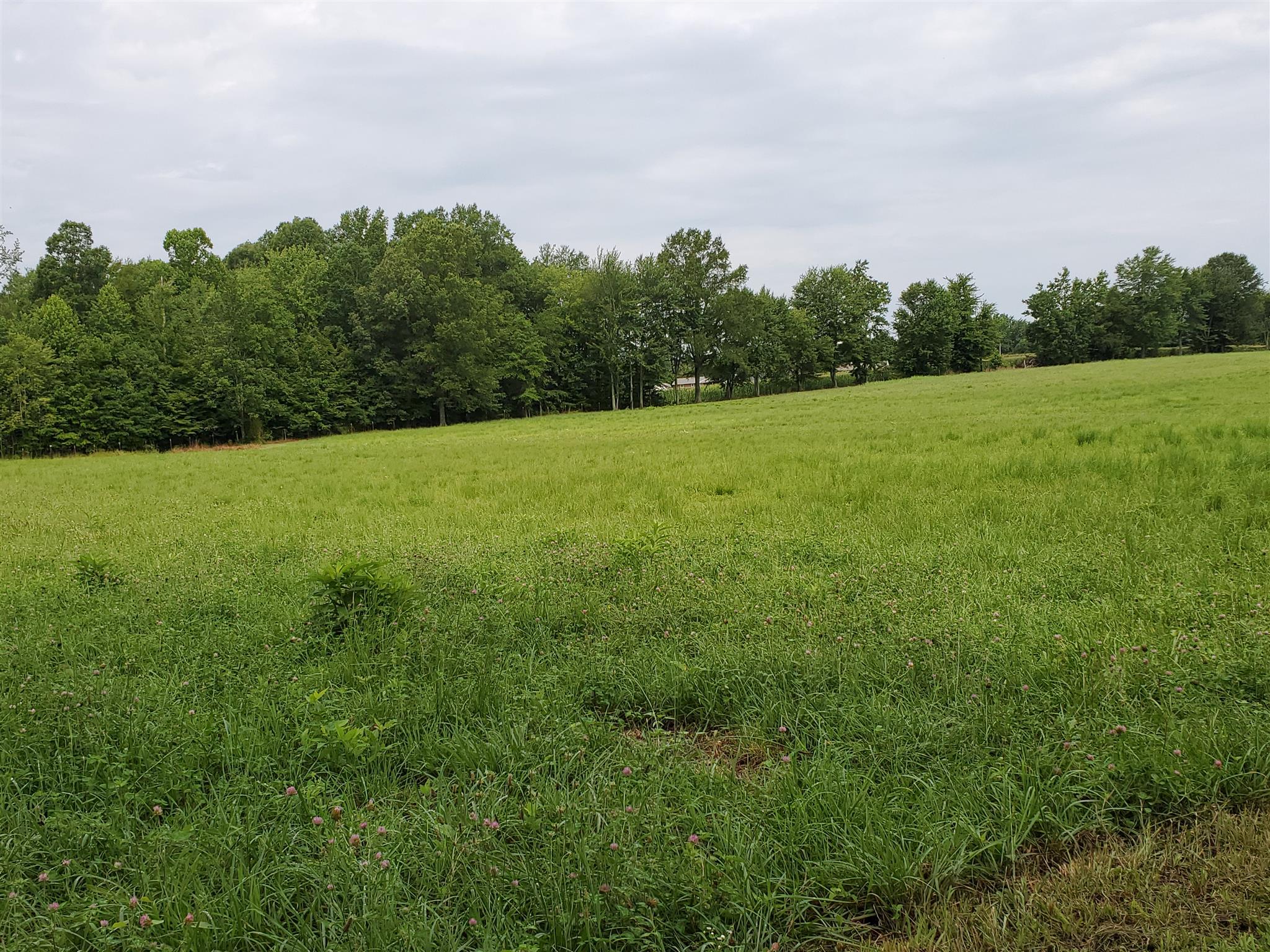 839 Dry Creek Rd, Smithville, TN 37166 - Smithville, TN real estate listing