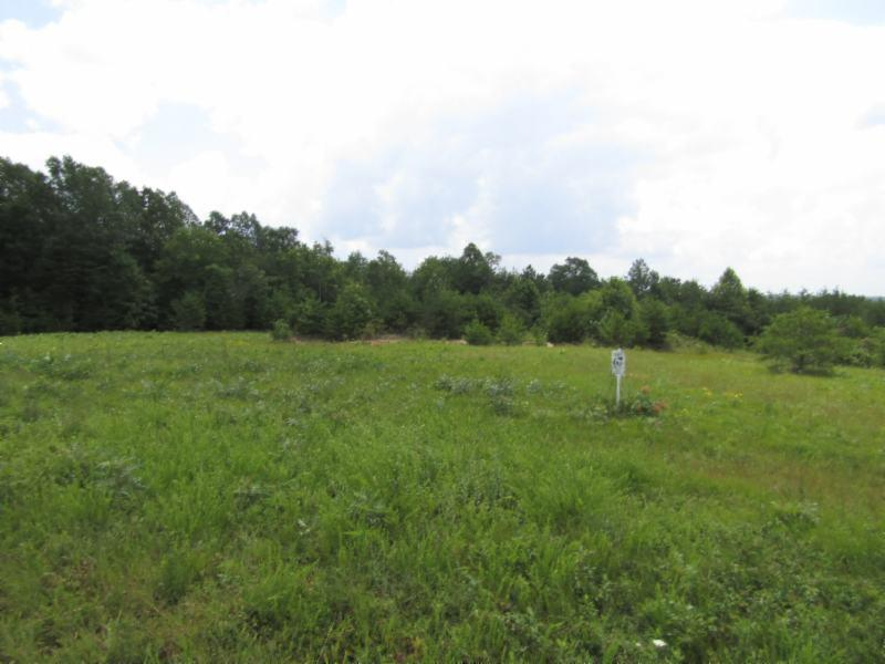 5 .01ac Vista View Pkwy, Jamestown, TN 38556 - Jamestown, TN real estate listing