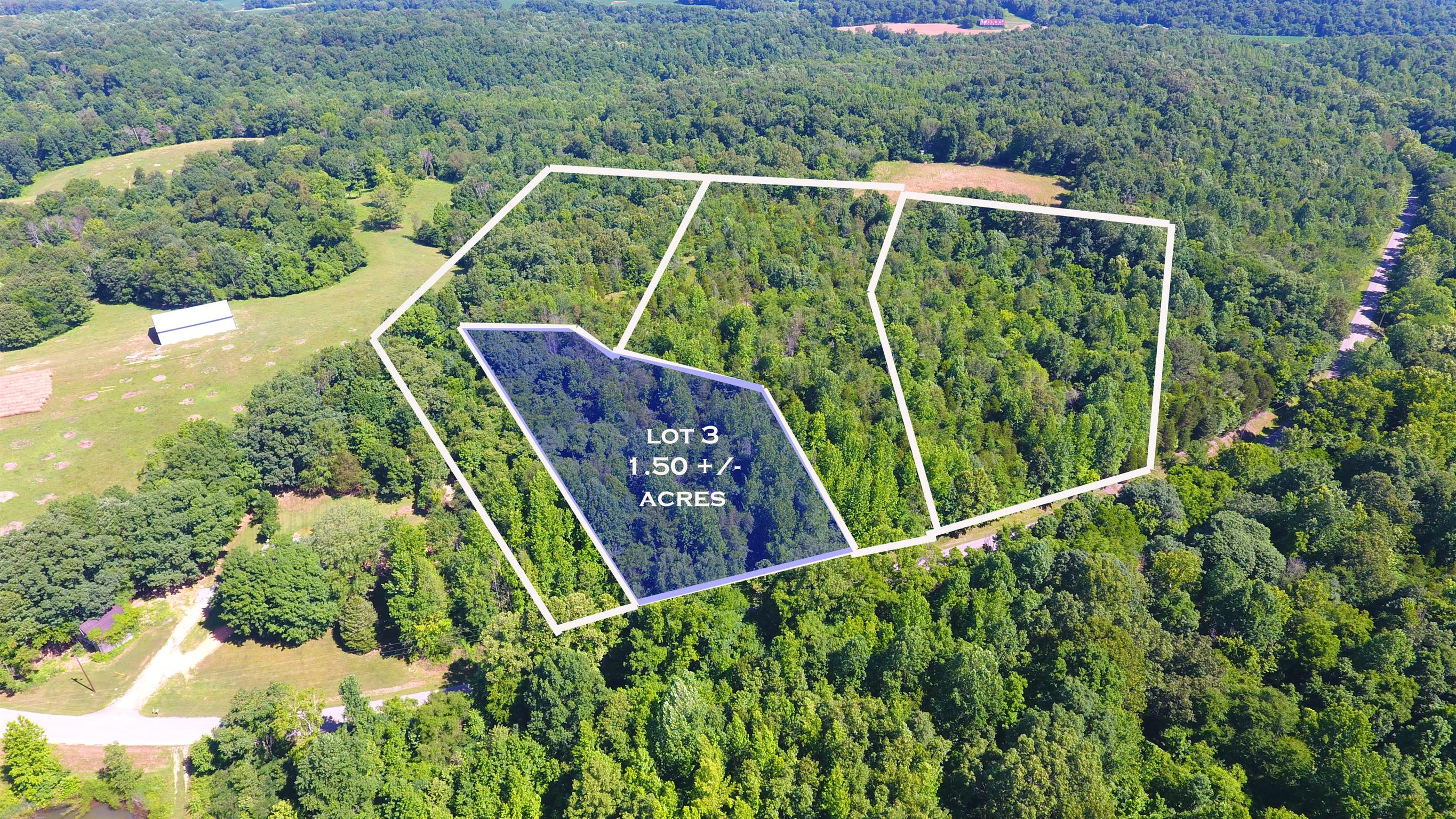 3 Old Highway 48 (Lot 3), Cunningham, TN 37052 - Cunningham, TN real estate listing