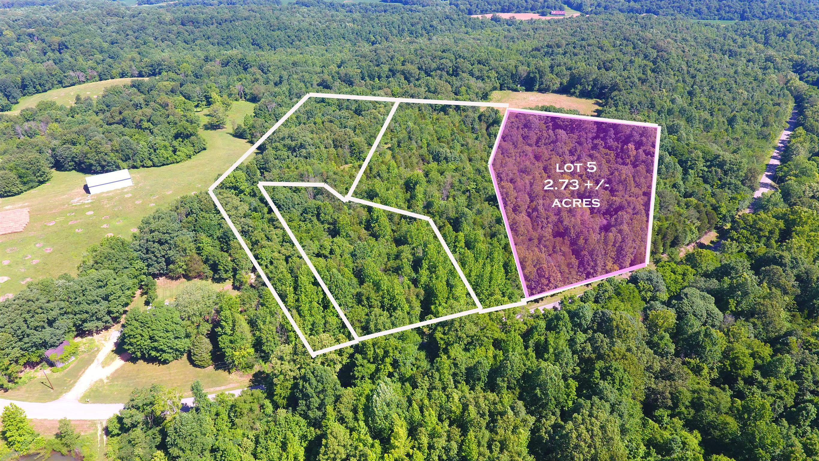 5 Old Highway 48 (Lot 5), Cunningham, TN 37052 - Cunningham, TN real estate listing