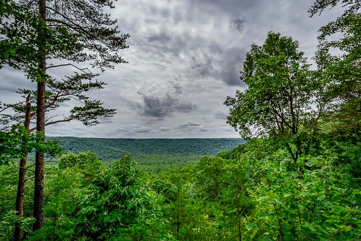 Bluffs @ Cumberland Cove Real Estate Listings Main Image